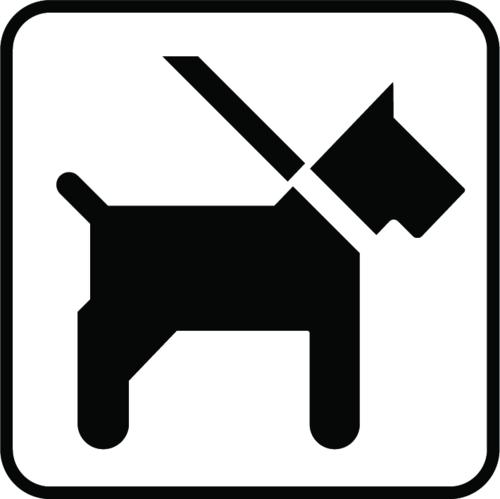 Hund i snor - Folie