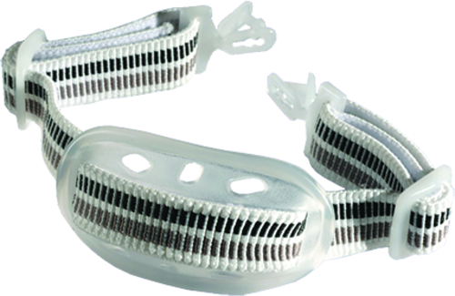 Centurion Chinstrap 2-point