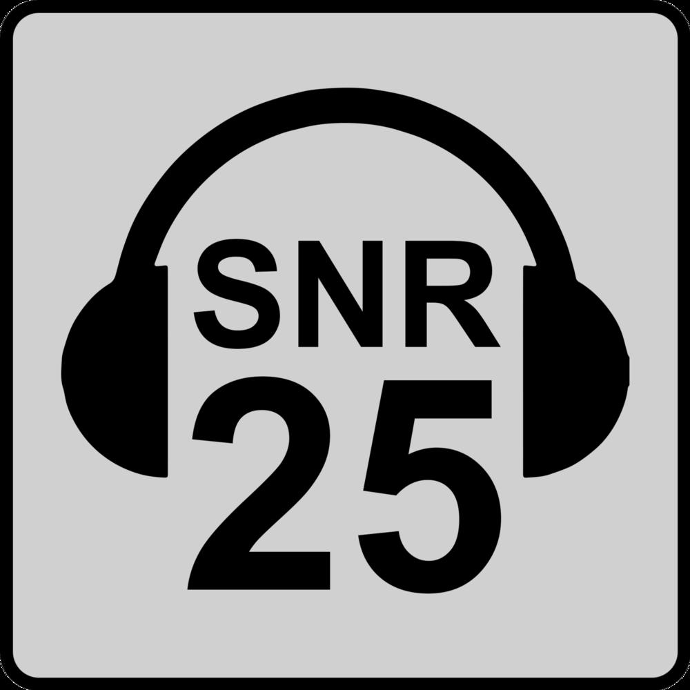SNR 25