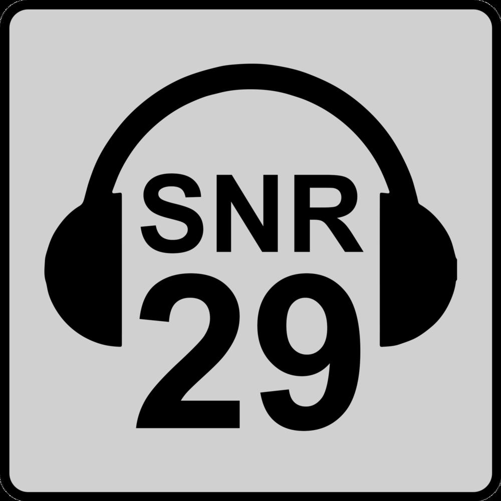 SNR 29