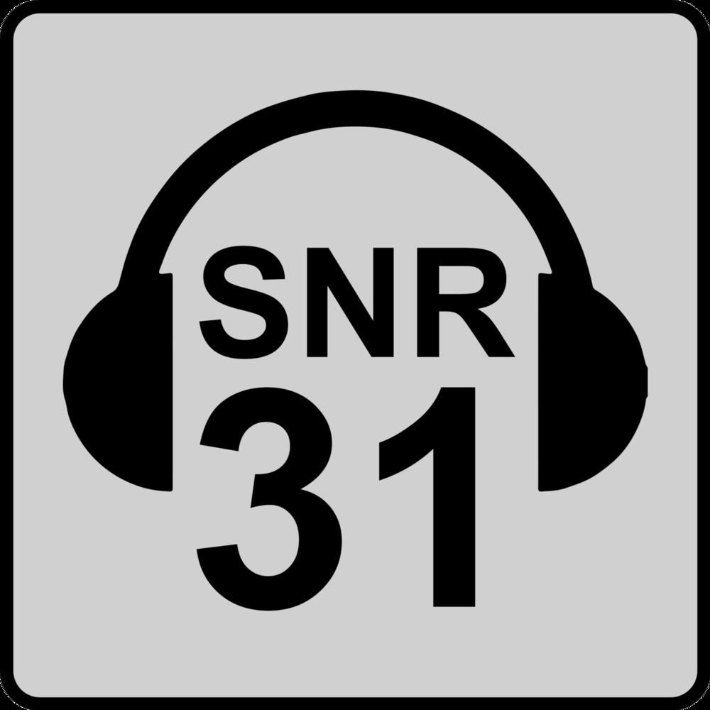 SNR 31