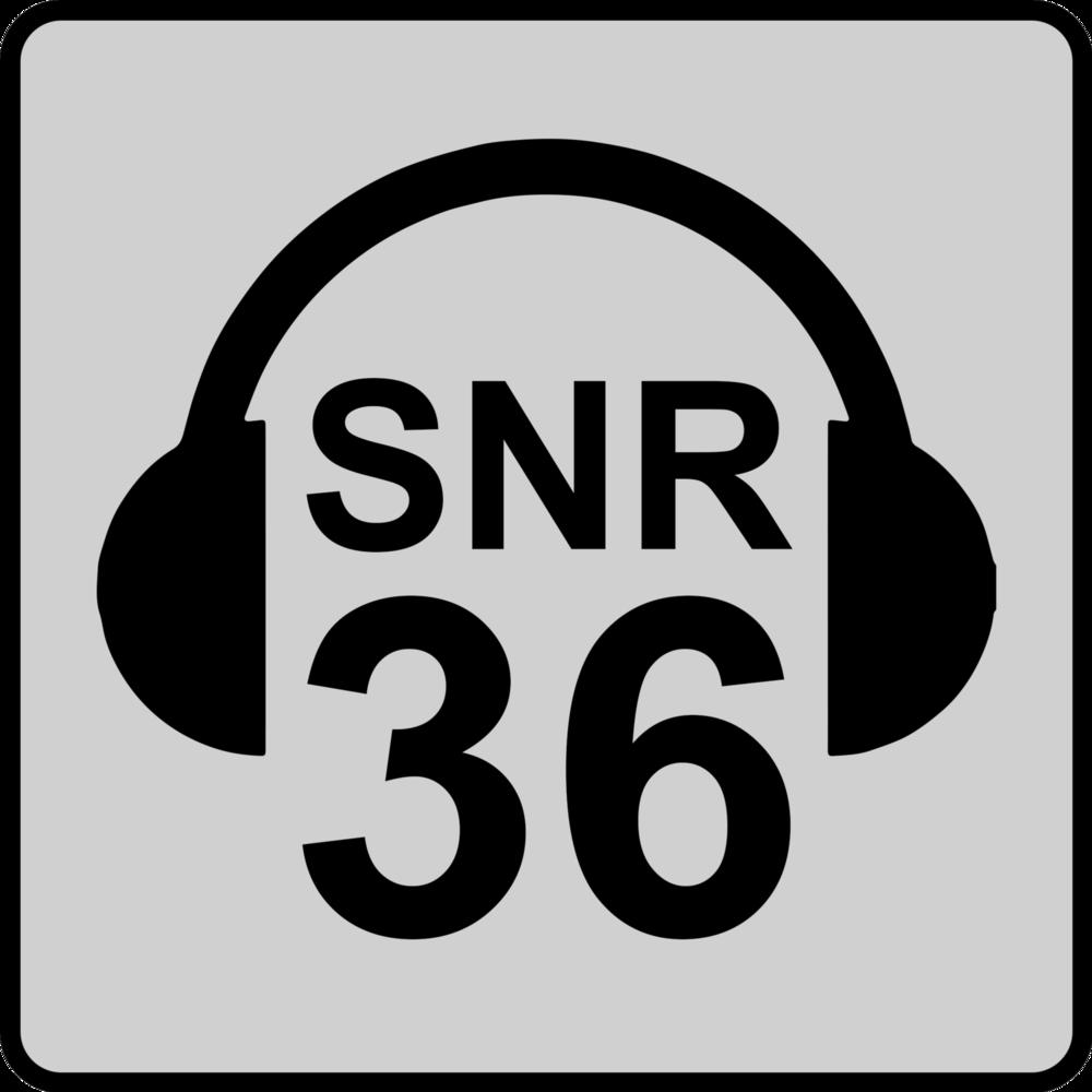 SNR 36