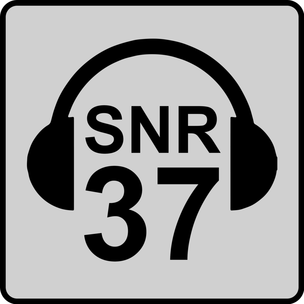 SNR 37