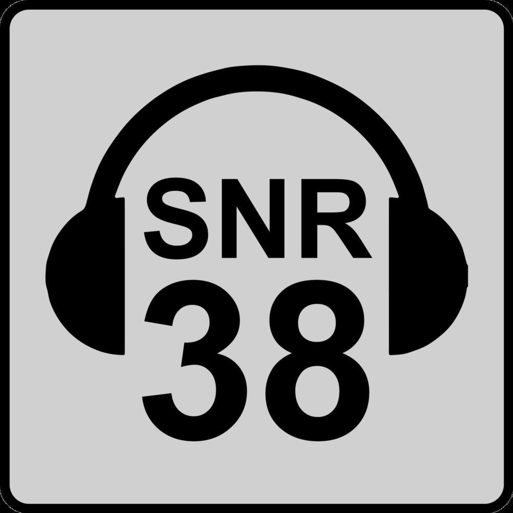 SNR 38